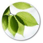 Thermacome, 1er système de planchers chauffants-rafraîchissants hydrauliques basse température – Ecologie